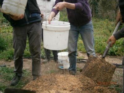 se rocía con agua para iniciar fermentación